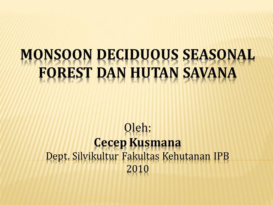 = hutan yang pohon-pohonnya menggugurkan daun pada musim kemarau, bertunas kembali pada musim hujan 1.
