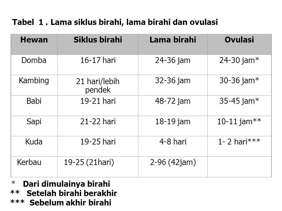 HewanSiklus birahiLama birahiOvulasi Domba16-17 hari24-36 jam24-30 jam* Kambing21 hari/lebih pendek 32-36 jam30-36 jam* Babi19-21 hari48-72 jam35-45 j