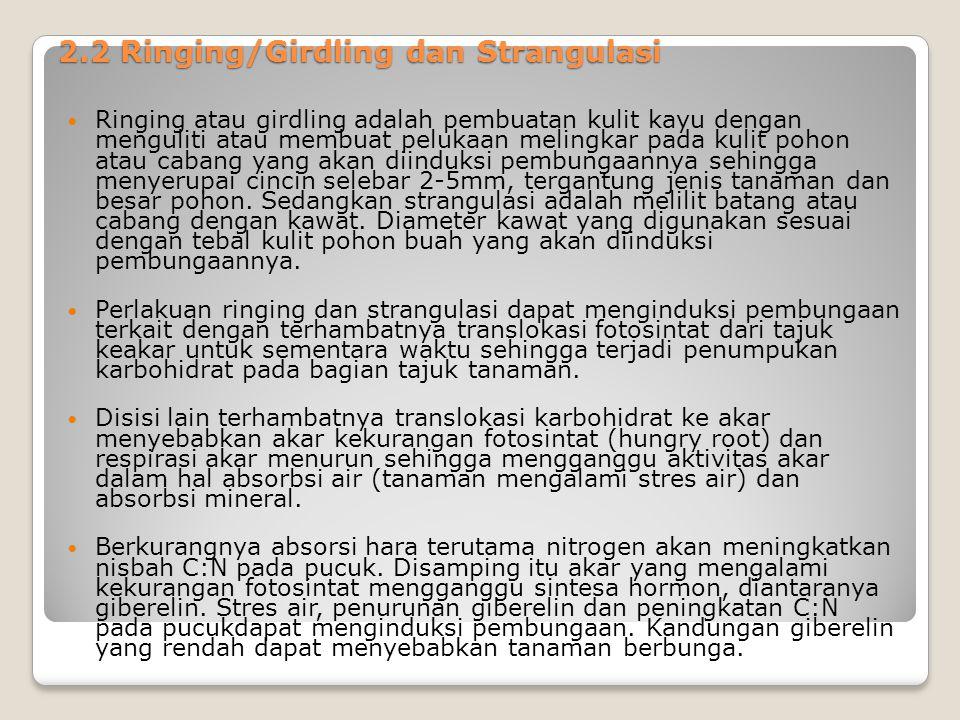 2.2 Ringing/Girdling dan Strangulasi Ringing atau girdling adalah pembuatan kulit kayu dengan menguliti atau membuat pelukaan melingkar pada kulit poh