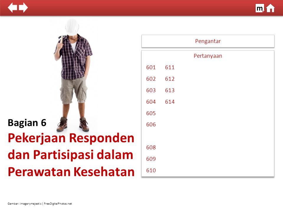 Pengantar Bagian 6 Pekerjaan Responden dan Partisipasi dalam Perawatan Kesehatan Gambar: imagerymajestic | FreeDigitalPhotos.net 100% SDKI 2012 m
