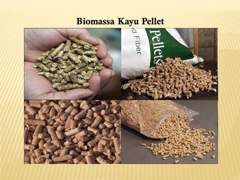 Biomassa Kayu Pellet