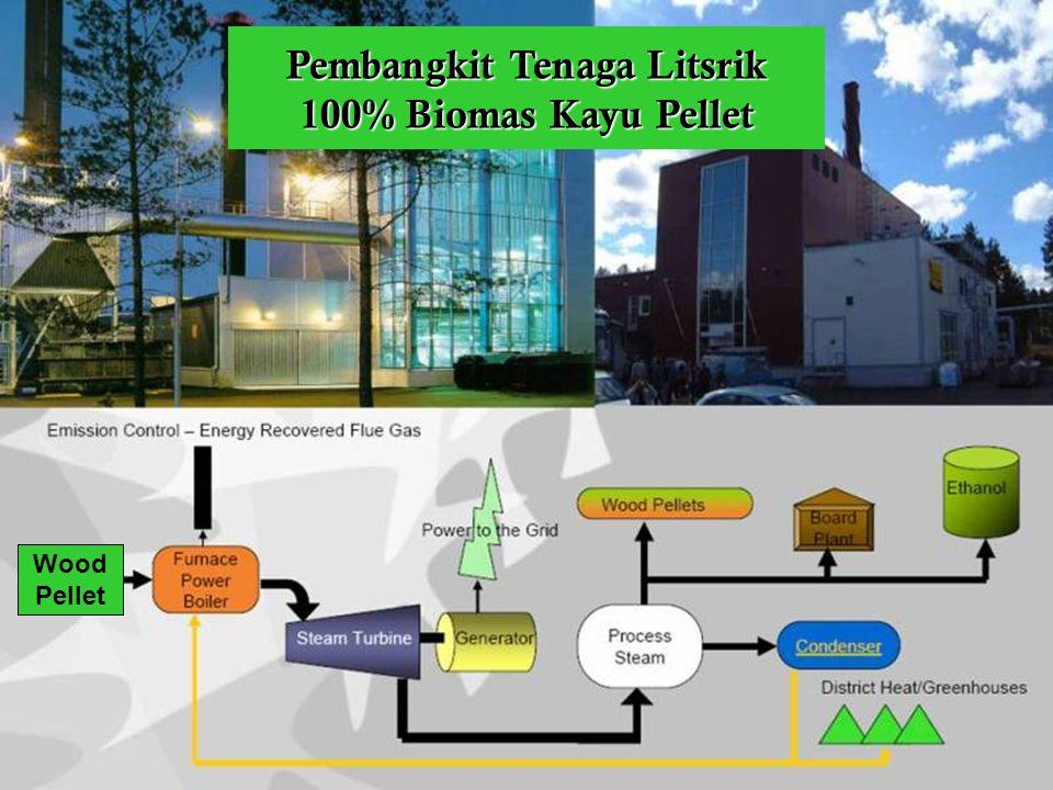 Pembangkit Tenaga Litsrik 100% Biomas Kayu Pellet Wood Pellet
