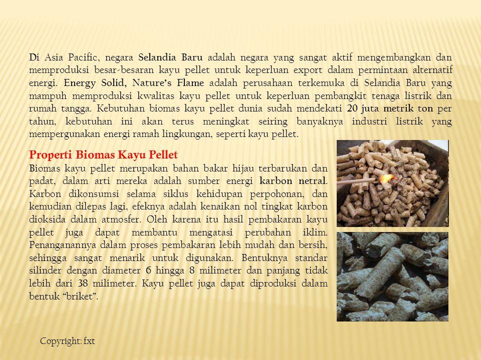 Properti Biomas Kayu Pellet B iomas kayu pellet merupakan bahan bakar hijau terbarukan dan padat, dalam arti mereka adalah sumber energi karbon netral.