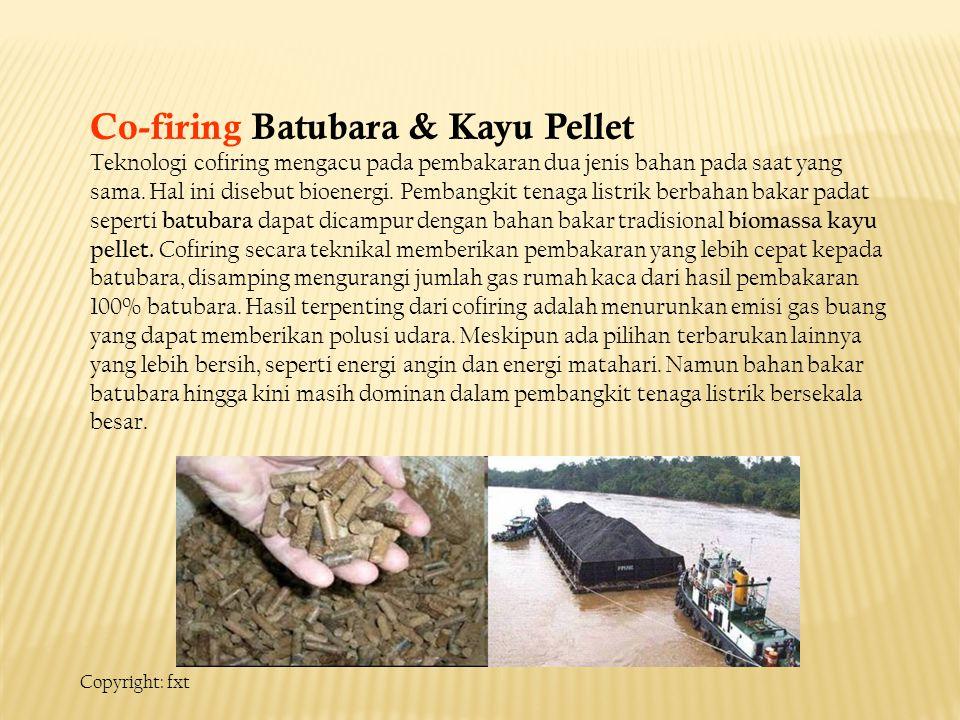 Co-firing Batubara & Kayu Pellet Teknologi cofiring mengacu pada pembakaran dua jenis bahan pada saat yang sama.