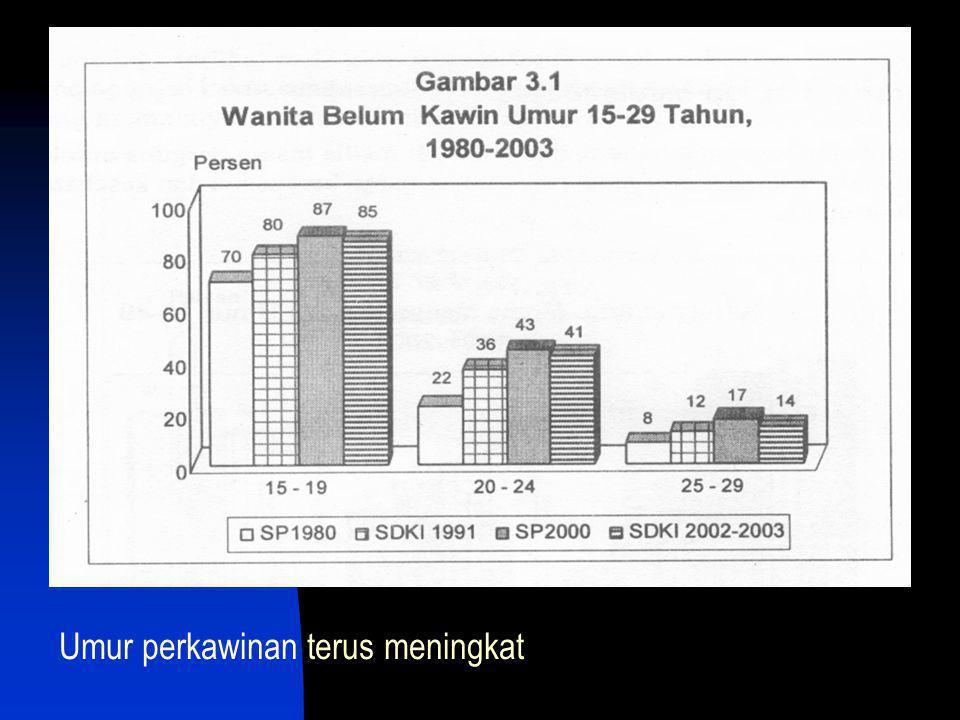 Kenaikan umur kawin pertama 18 th (1991)  19 th (2003) Wanita perkotaan menikah lebih lambat diband perdesaan Kenaikan umur kawin pertama sama di kota dan desa yi 1 th