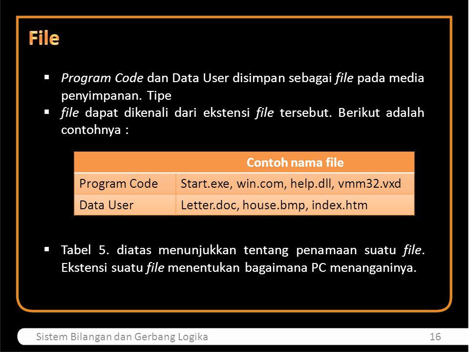  Program Code dan Data User disimpan sebagai file pada media penyimpanan. Tipe  file dapat dikenali dari ekstensi file tersebut. Berikut adalah cont