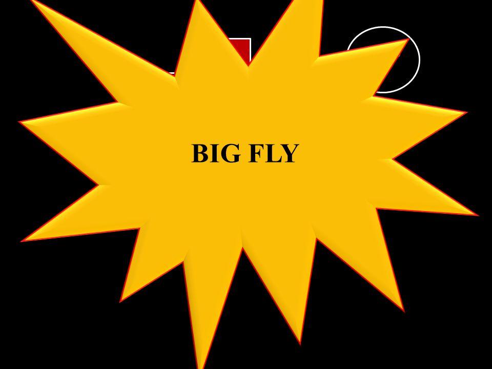 A1234567 BOARD 2 BIG FLY