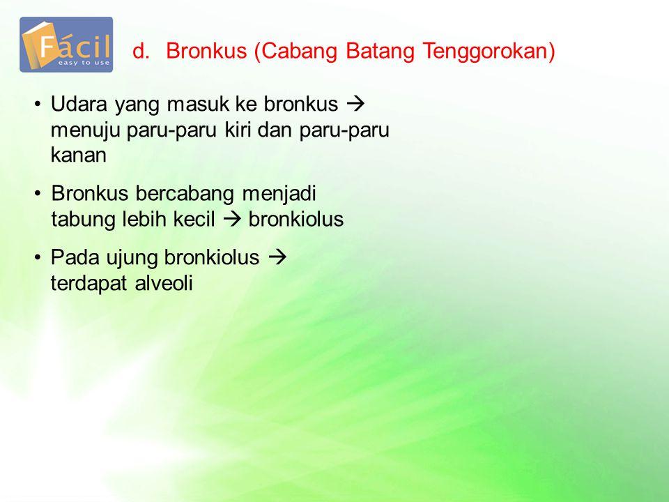 d.Bronkus (Cabang Batang Tenggorokan) Udara yang masuk ke bronkus  menuju paru-paru kiri dan paru-paru kanan Bronkus bercabang menjadi tabung lebih kecil  bronkiolus Pada ujung bronkiolus  terdapat alveoli