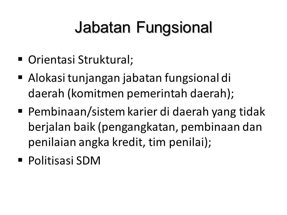 Jabatan Fungsional  Orientasi Struktural;  Alokasi tunjangan jabatan fungsional di daerah (komitmen pemerintah daerah);  Pembinaan/sistem karier di daerah yang tidak berjalan baik (pengangkatan, pembinaan dan penilaian angka kredit, tim penilai);  Politisasi SDM