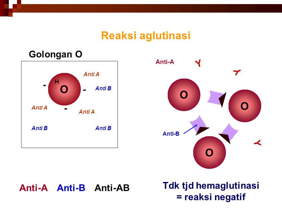 42 Reaksi aglutinasi O Tdk tjd hemaglutinasi = reaksi negatif O O Anti-A + Anti-B Golongan O O - Anti A - - Anti B H Anti-BAnti-AB Anti-A Y Y Y