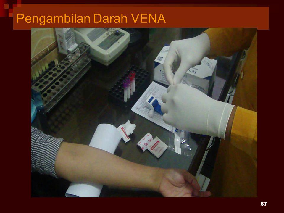 Pengambilan Darah VENA 57