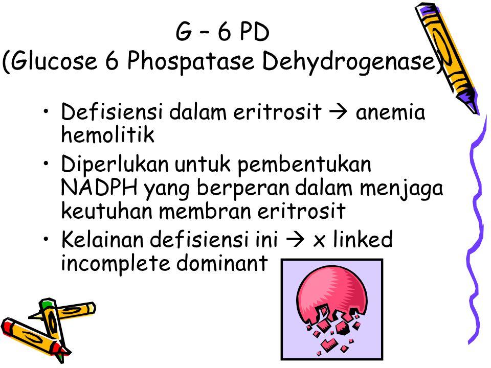 G – 6 PD (Glucose 6 Phospatase Dehydrogenase) Defisiensi dalam eritrosit  anemia hemolitik Diperlukan untuk pembentukan NADPH yang berperan dalam men