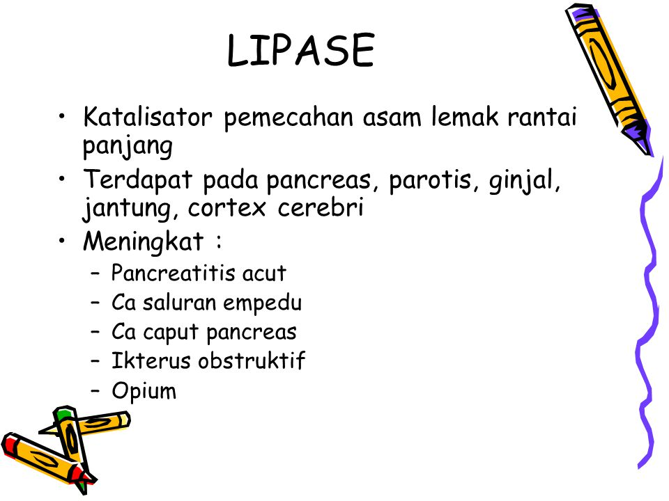 LIPASE Katalisator pemecahan asam lemak rantai panjang Terdapat pada pancreas, parotis, ginjal, jantung, cortex cerebri Meningkat : –Pancreatitis acut