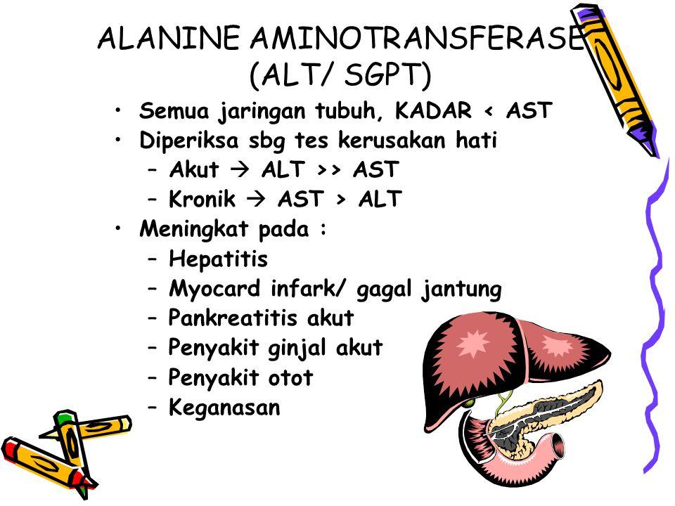 ALANINE AMINOTRANSFERASE (ALT/ SGPT) Semua jaringan tubuh, KADAR < AST Diperiksa sbg tes kerusakan hati –Akut  ALT >> AST –Kronik  AST > ALT Meningk