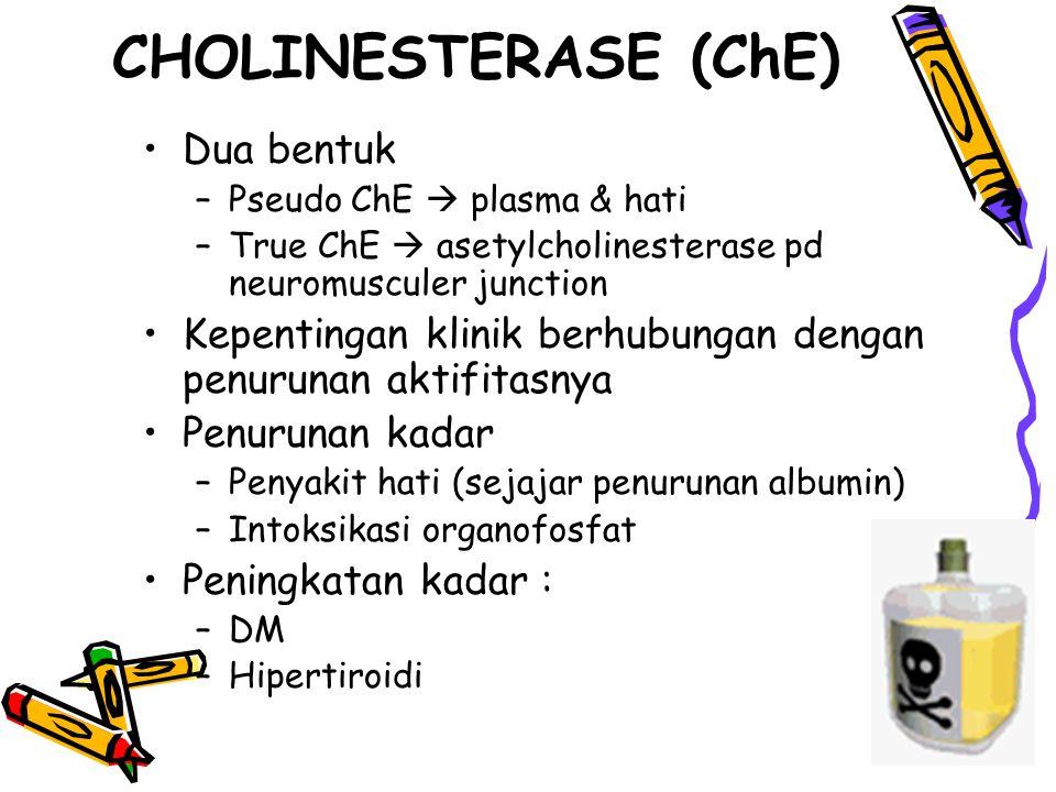 CHOLINESTERASE (ChE) Dua bentuk –Pseudo ChE  plasma & hati –True ChE  asetylcholinesterase pd neuromusculer junction Kepentingan klinik berhubungan