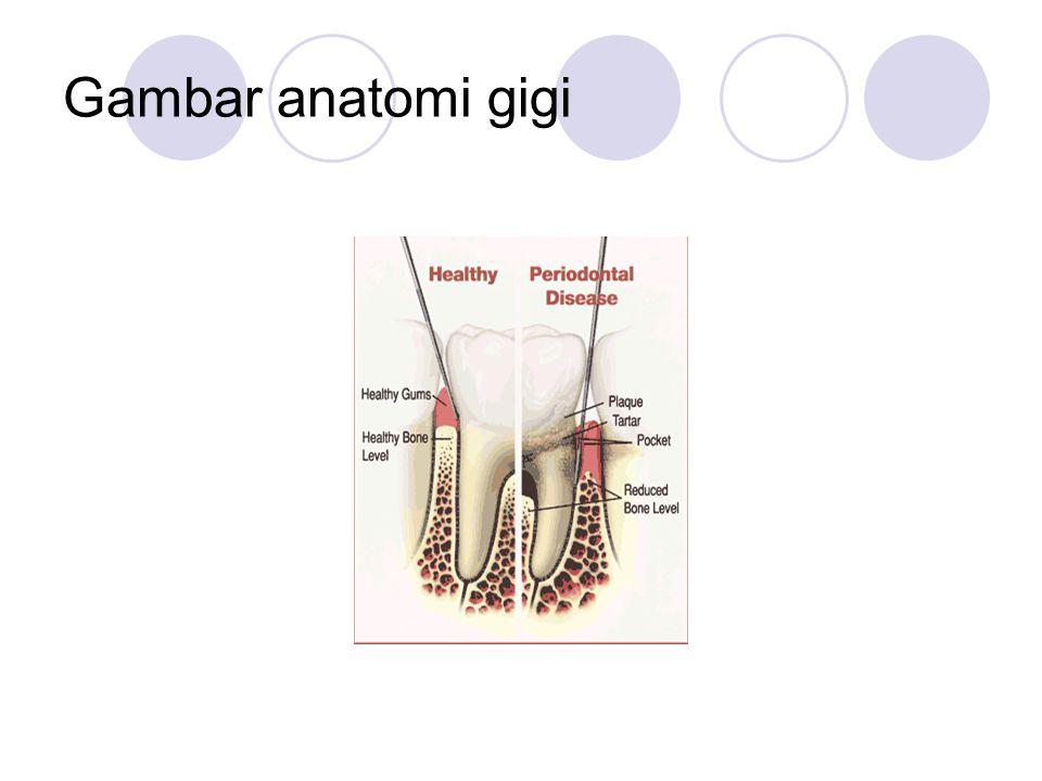 Kelainan-kelainan yang bisa terjadi di dalam mulut : 1.Gigi berlubang.
