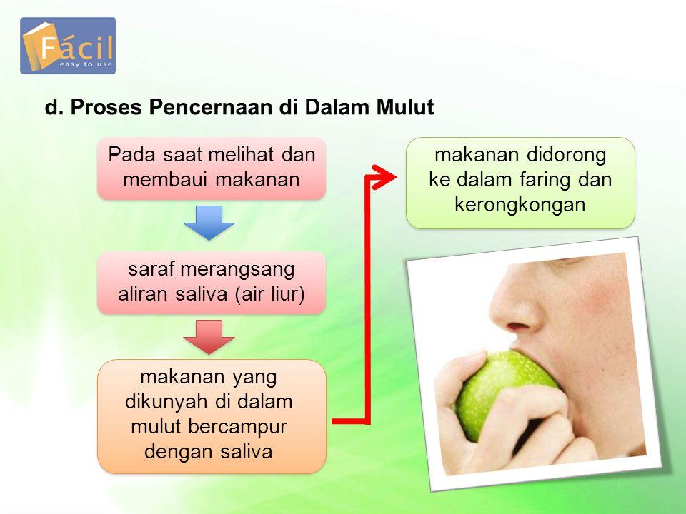 d. Proses Pencernaan di Dalam Mulut Pada saat melihat dan membaui makanan makanan yang dikunyah di dalam mulut bercampur dengan saliva makanan didoron