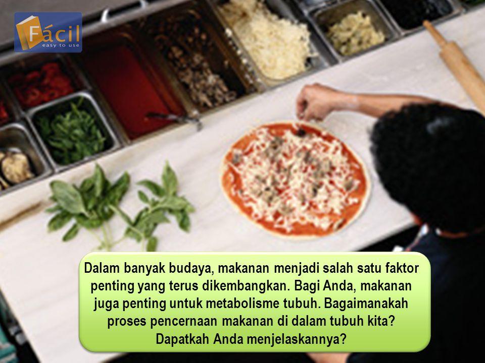 Dalam banyak budaya, makanan menjadi salah satu faktor penting yang terus dikembangkan. Bagi Anda, makanan juga penting untuk metabolisme tubuh. Bagai