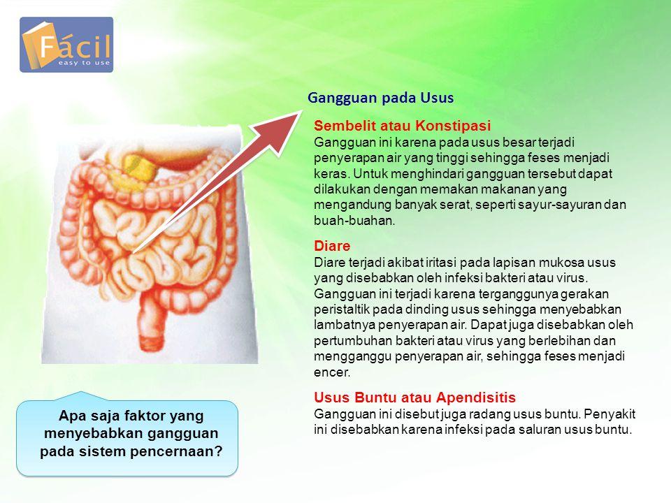 Sembelit atau Konstipasi Gangguan ini karena pada usus besar terjadi penyerapan air yang tinggi sehingga feses menjadi keras. Untuk menghindari ganggu