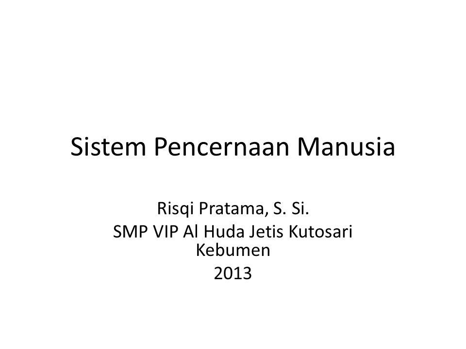 Sistem Pencernaan Manusia Risqi Pratama, S. Si. SMP VIP Al Huda Jetis Kutosari Kebumen 2013