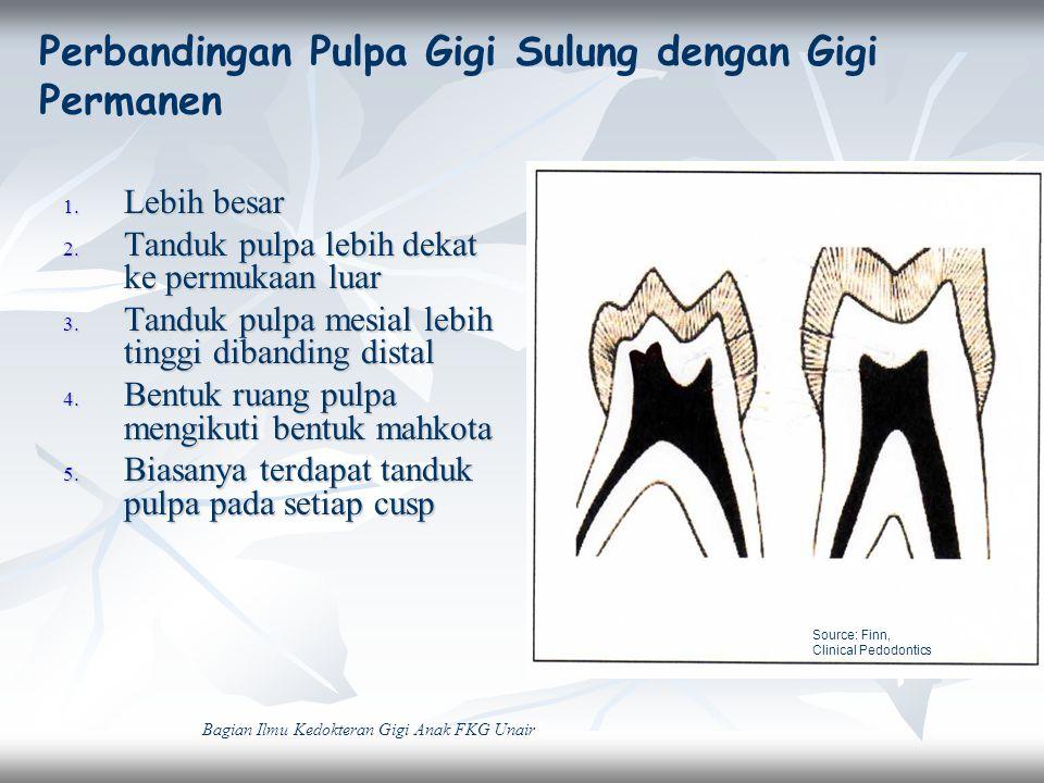 Gambaran tanduk pulpa bagian mesial lebih tinggi pada Gigi Sulung.