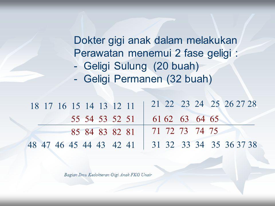 Dokter gigi anak dalam melakukan Perawatan menemui 2 fase geligi : - Geligi Sulung (20 buah) - Geligi Permanen (32 buah) 61 62 63 64 65 71 72 73 74 75