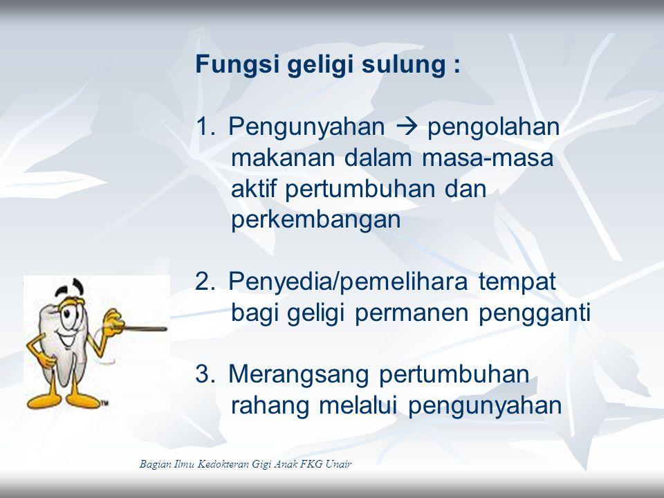 Fungsi geligi sulung : 1.Pengunyahan  pengolahan makanan dalam masa-masa aktif pertumbuhan dan perkembangan 2.Penyedia/pemelihara tempat bagi geligi
