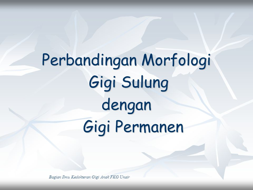 Mahkota Gigi Sulung dibanding Gigi Permanen 1.Lebih pendek 2.