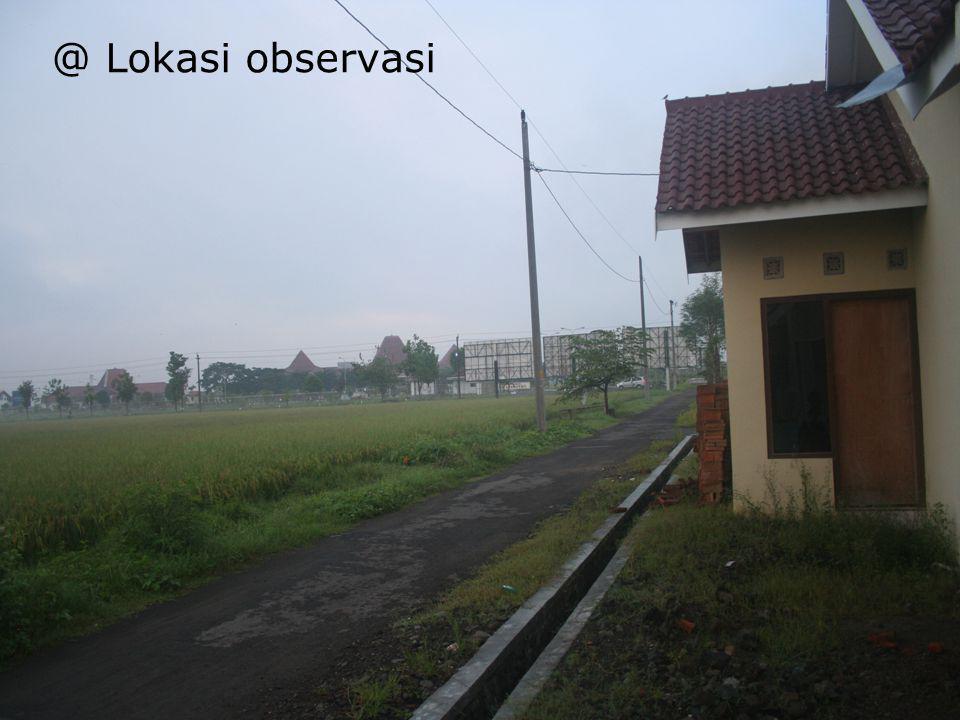 @ Lokasi observasi