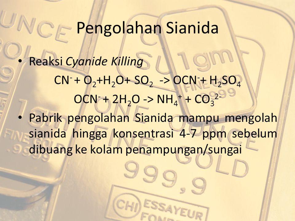 Pengolahan Sianida Reaksi Cyanide Killing CN - + O 2 +H 2 O+ SO 2 -> OCN - + H 2 SO 4 OCN - + 2H 2 O -> NH 4 + + CO 3 2- Pabrik pengolahan Sianida mam