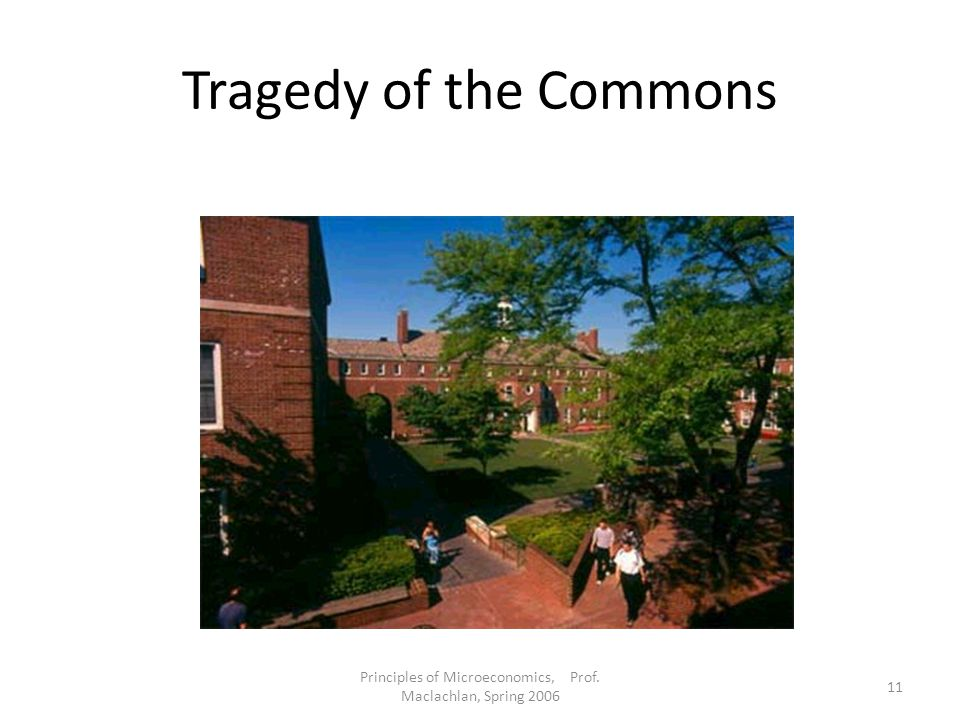 Principles of Microeconomics, Prof. Maclachlan, Spring 2006 11 Tragedy of the Commons