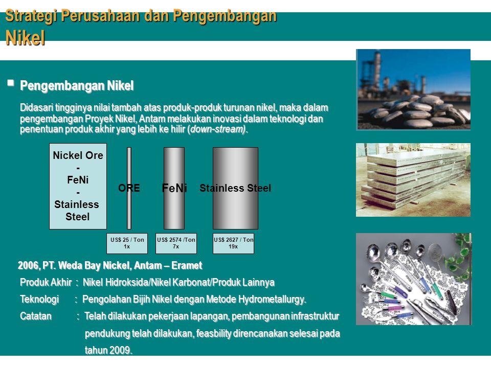 Strategi Perusahaan dan Pengembangan Nikel  Pengembangan Nikel Didasari tingginya nilai tambah atas produk-produk turunan nikel, maka dalam pengemban