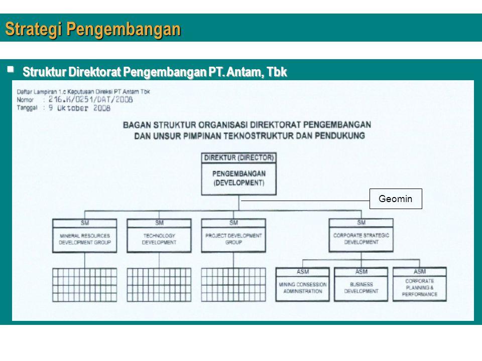 Strategi Pengembangan  Struktur Direktorat Pengembangan PT. Antam, Tbk Geomin