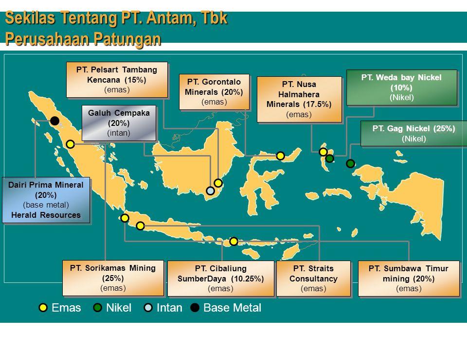 PT. Gorontalo Minerals (20%) (emas) PT. Gorontalo Minerals (20%) (emas) PT. Straits Consultancy (emas) Galuh Cempaka (20%) (intan) Galuh Cempaka (20%)