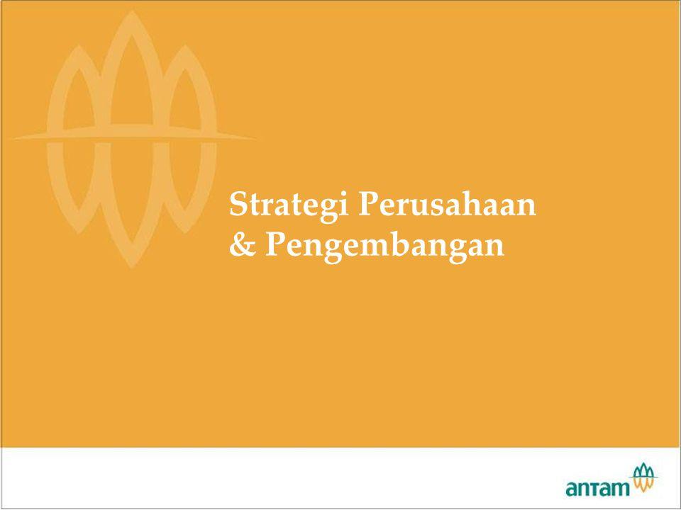 Rapat Pimpinan 2007 Strategi Perusahaan & Pengembangan