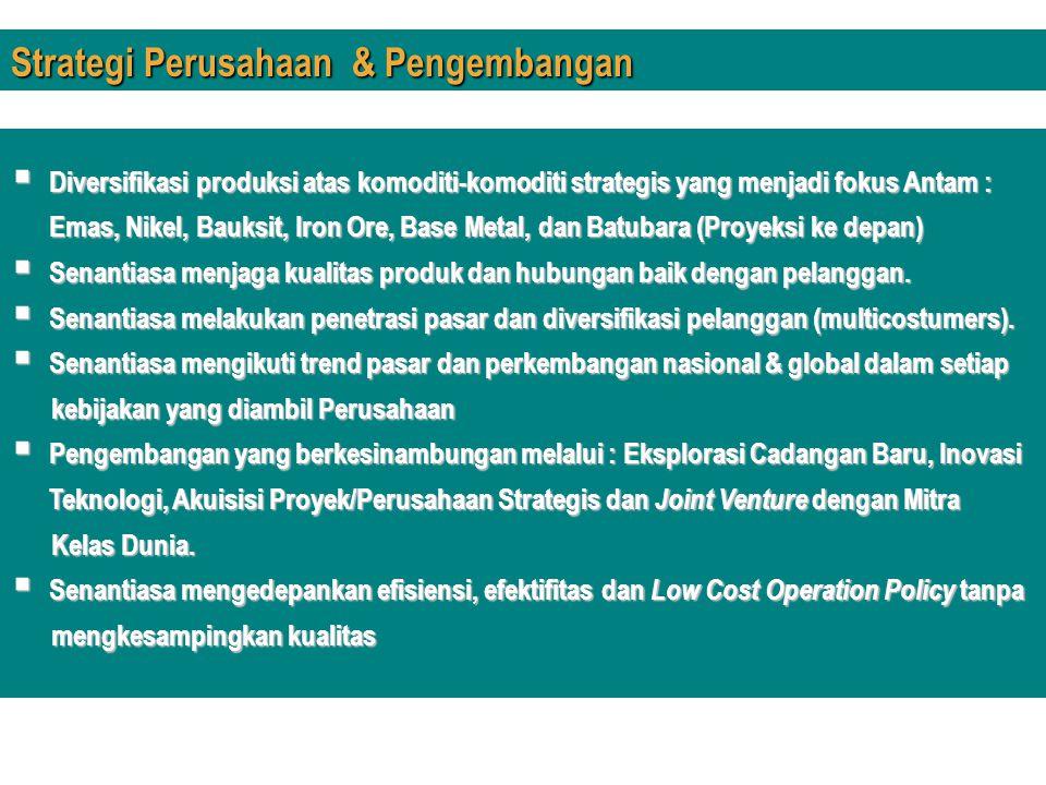  Diversifikasi produksi atas komoditi-komoditi strategis yang menjadi fokus Antam : Emas, Nikel, Bauksit, Iron Ore, Base Metal, dan Batubara (Proyeks