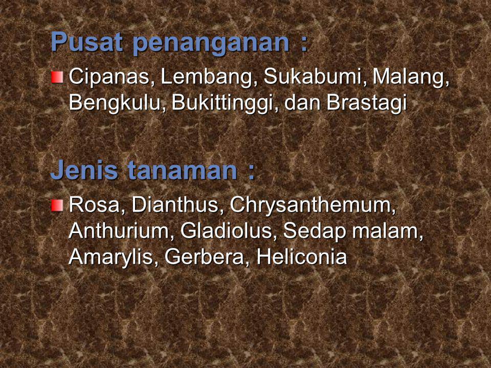 Pusat penanganan : Cipanas, Lembang, Sukabumi, Malang, Bengkulu, Bukittinggi, dan Brastagi Jenis tanaman : Rosa, Dianthus, Chrysanthemum, Anthurium, G