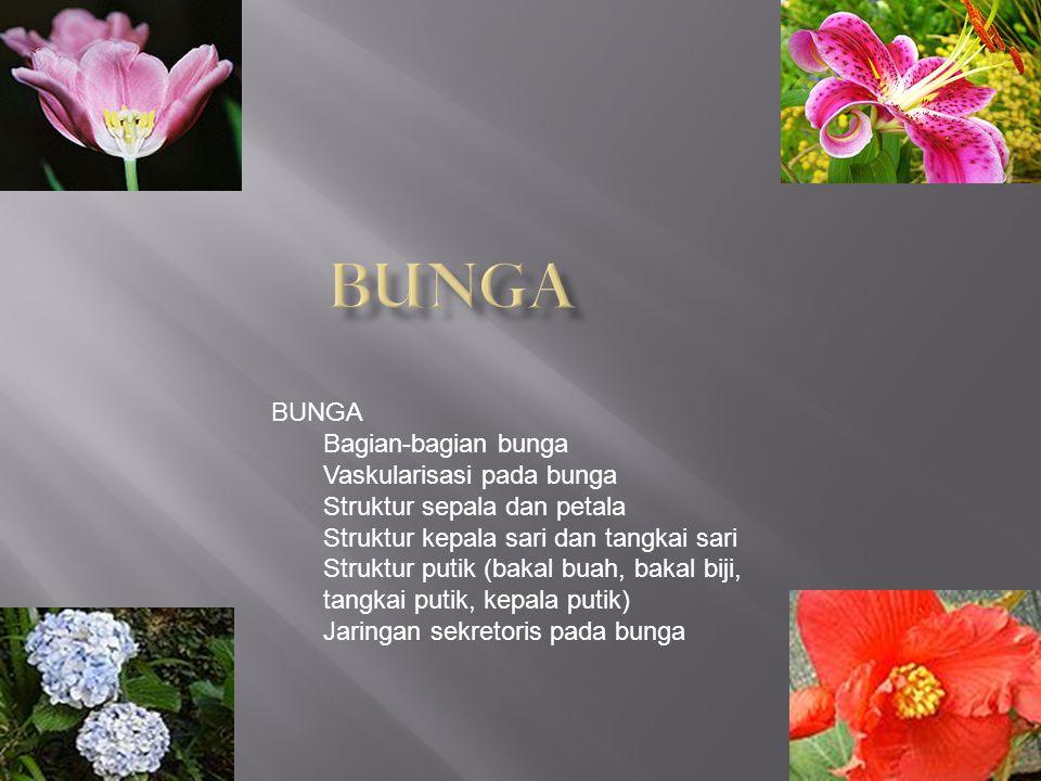 BUNGA Bagian-bagian bunga Vaskularisasi pada bunga Struktur sepala dan petala Struktur kepala sari dan tangkai sari Struktur putik (bakal buah, bakal