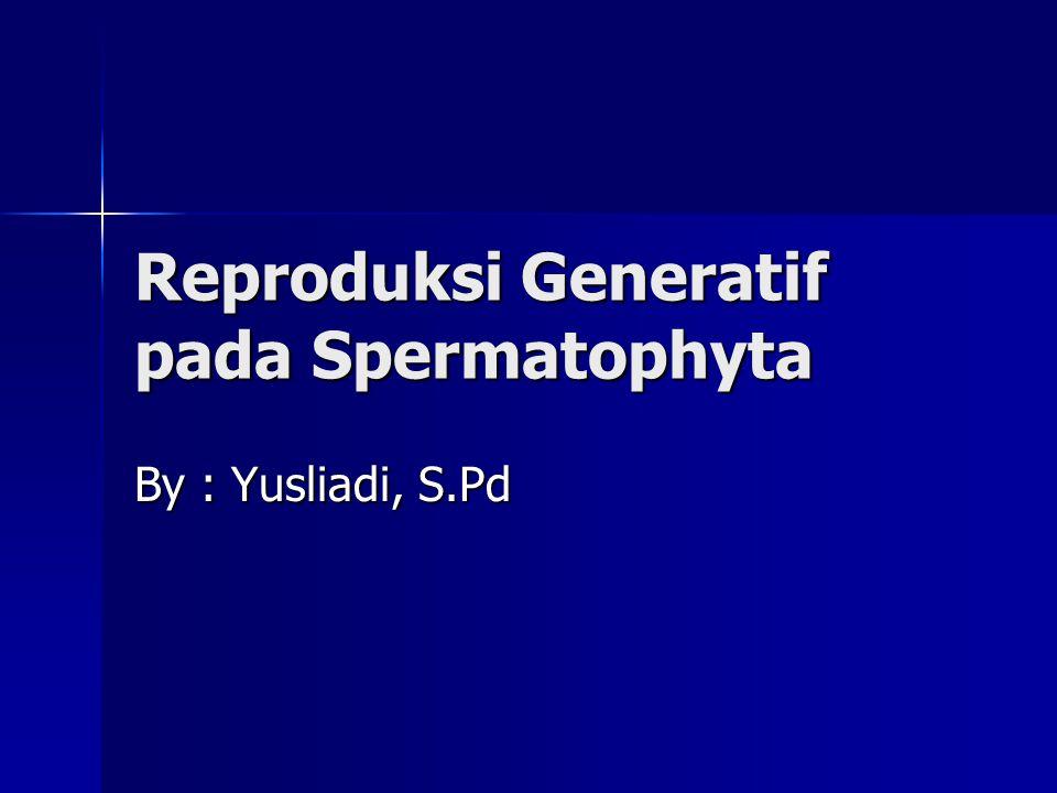 Reproduksi Generatif pada Spermatophyta By : Yusliadi, S.Pd