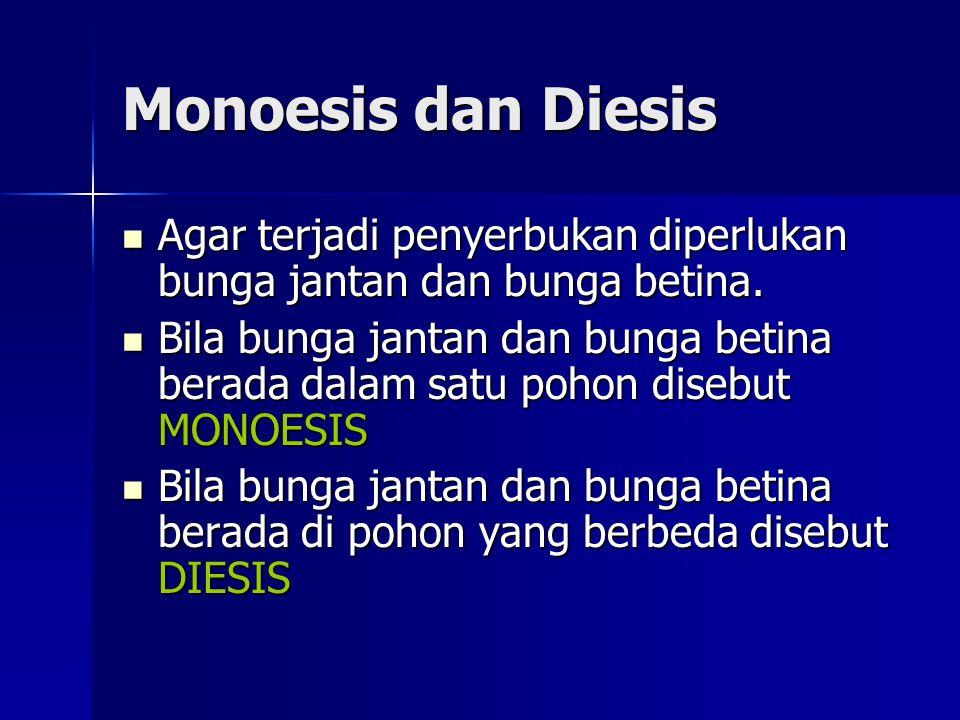 Monoesis dan Diesis Agar terjadi penyerbukan diperlukan bunga jantan dan bunga betina. Agar terjadi penyerbukan diperlukan bunga jantan dan bunga beti