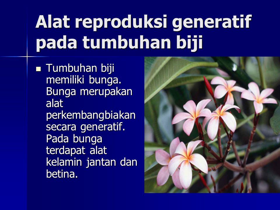 Alat reproduksi generatif pada tumbuhan biji Tumbuhan biji memiliki bunga. Bunga merupakan alat perkembangbiakan secara generatif. Pada bunga terdapat