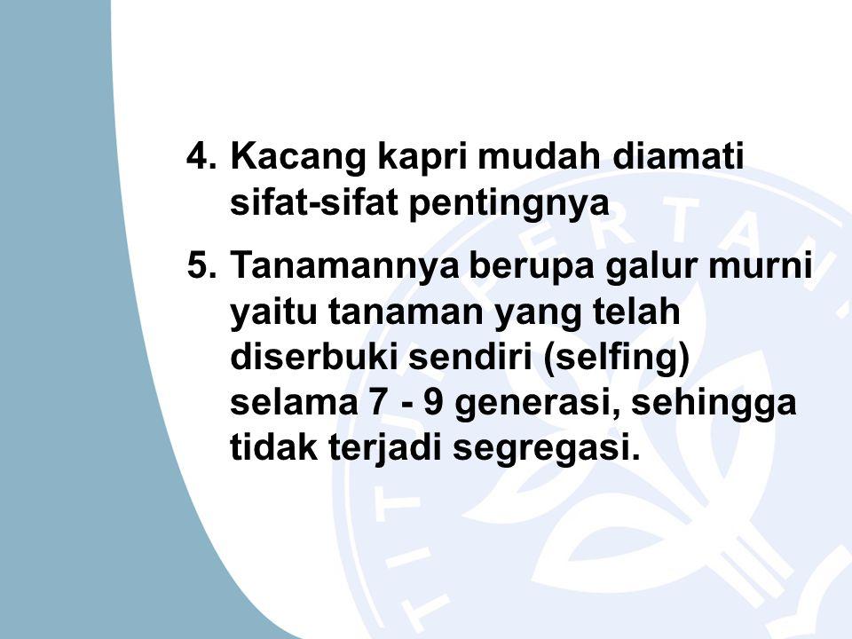 4.Kacang kapri mudah diamati sifat-sifat pentingnya 5.Tanamannya berupa galur murni yaitu tanaman yang telah diserbuki sendiri (selfing) selama 7 - 9