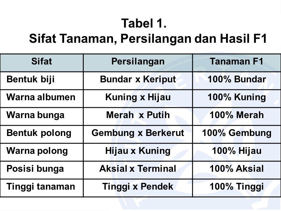 Tabel 1. Sifat Tanaman, Persilangan dan Hasil F1 SifatPersilanganTanaman F1 Bentuk bijiBundar x Keriput100% Bundar Warna albumenKuning x Hijau100% Kun