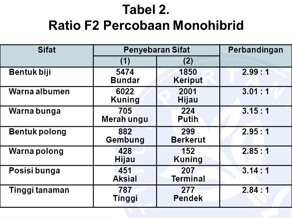 Tabel 2. Ratio F2 Percobaan Monohibrid SifatPenyebaran SifatPerbandingan (1)(2) Bentuk biji5474 Bundar 1850 Keriput 2.99 : 1 Warna albumen6022 Kuning