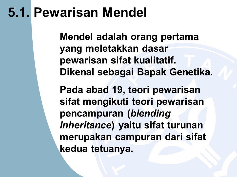 Mendel adalah orang pertama yang meletakkan dasar pewarisan sifat kualitatif. Dikenal sebagai Bapak Genetika. Pada abad 19, teori pewarisan sifat meng
