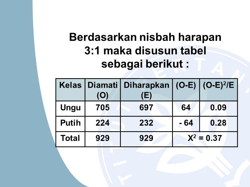 Berdasarkan nisbah harapan 3:1 maka disusun tabel sebagai berikut : KelasDiamati (O) Diharapkan (E) (O-E)(O-E) 2 /E Ungu705697640.09 Putih224232- 640.