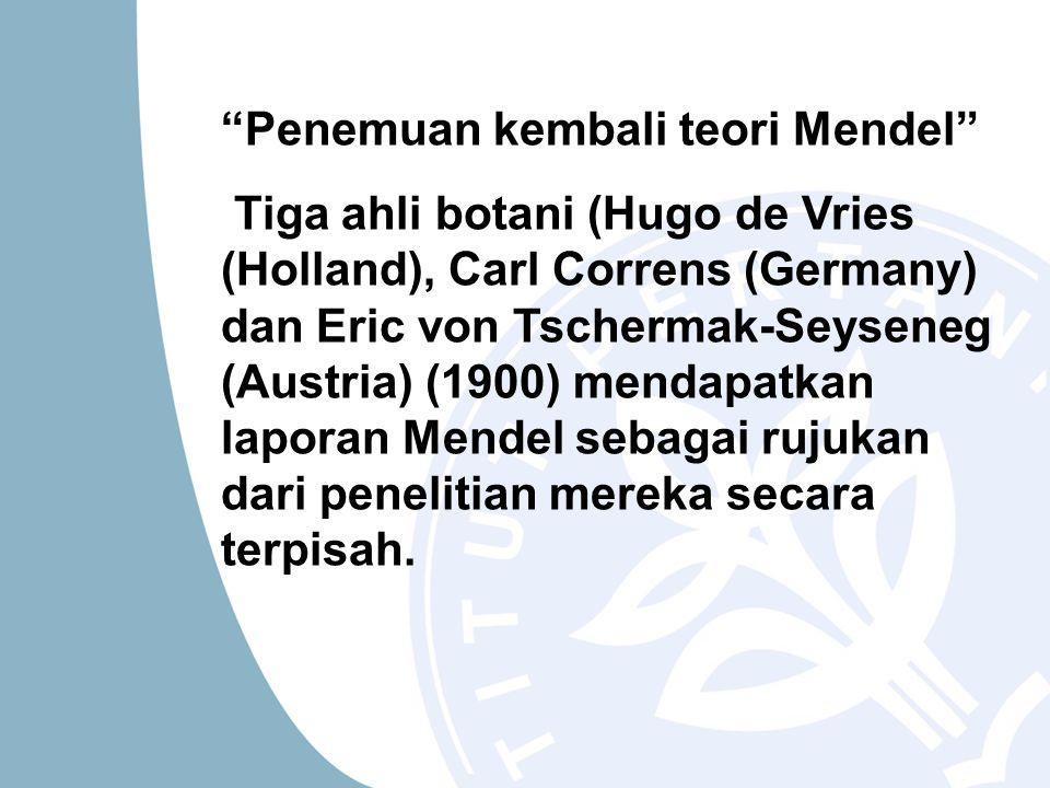 """""""Penemuan kembali teori Mendel"""" Tiga ahli botani (Hugo de Vries (Holland), Carl Correns (Germany) dan Eric von Tschermak-Seyseneg (Austria) (1900) men"""