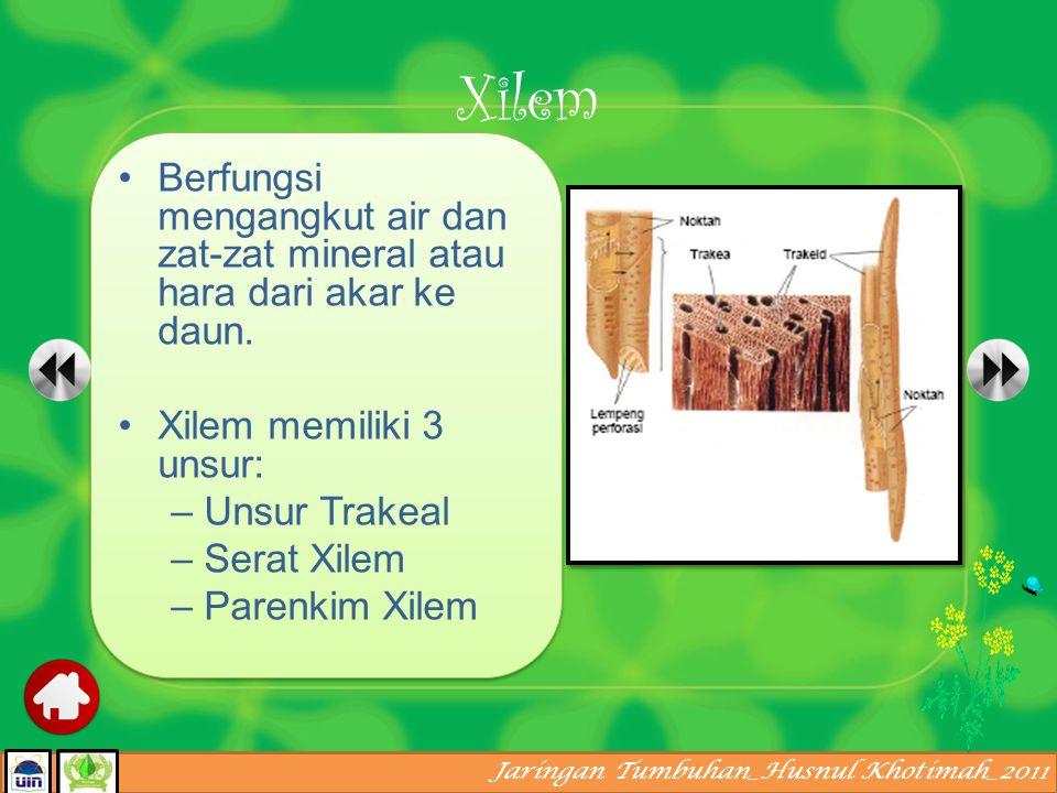 Jaringan Tumbuhan_Husnul Khotimah_2011 Merupakan jaringan tumbuhan yang bertugas melaksanakan fungsi transpor atau pengangkutan zat Terdiri dari jarin