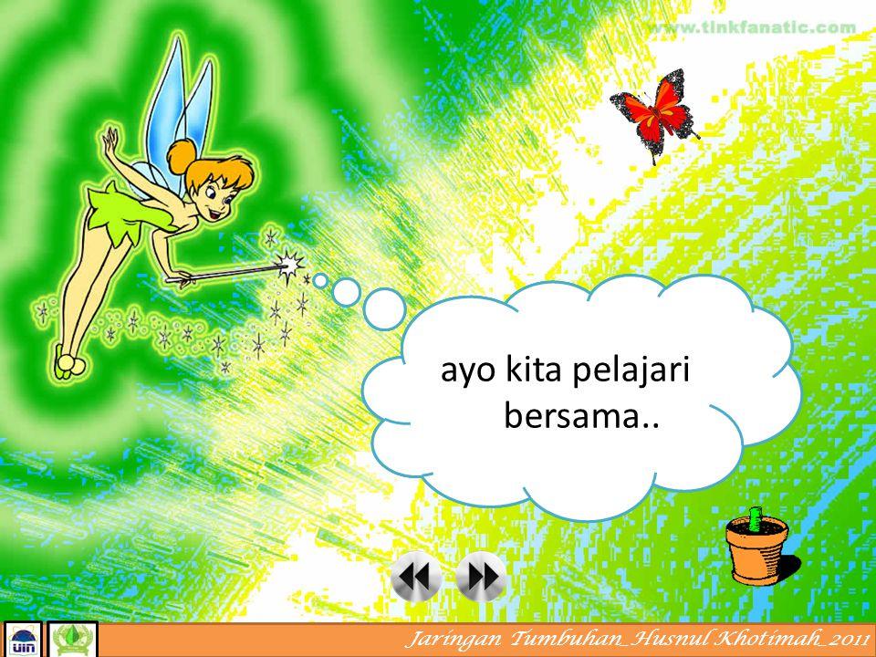 Jaringan Tumbuhan_Husnul Khotimah_2011