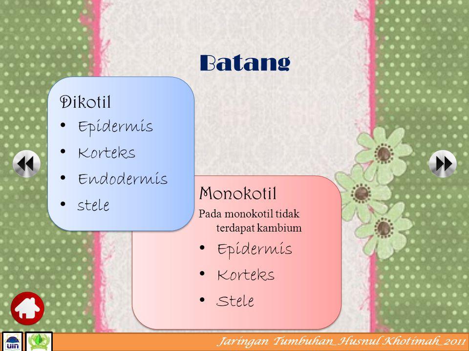 Jaringan Tumbuhan_Husnul Khotimah_2011 A. Akar 1) epidermis 2) korteks 3) endodermis 4) stele Macam jaringan pada organ tumbuhan